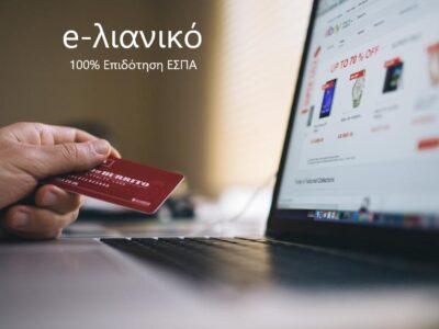 e-lianiko_WEB